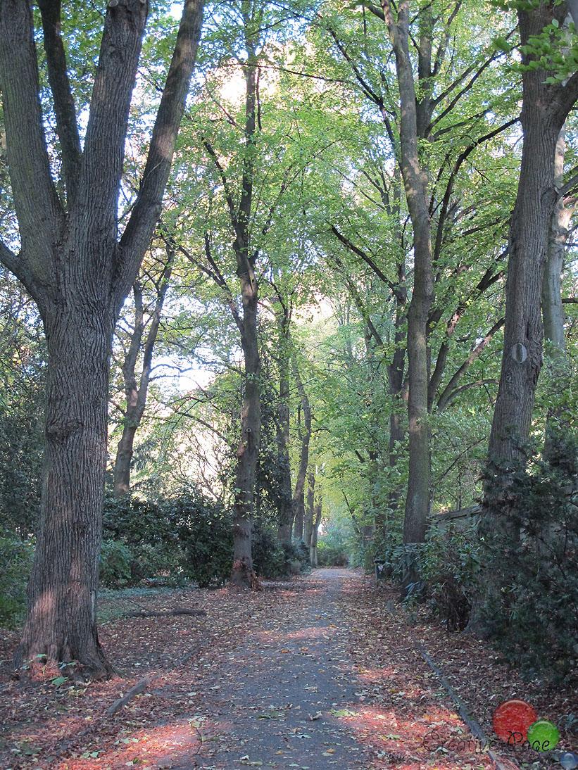 do_ostfriedhof-11