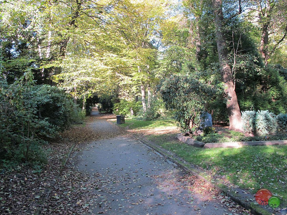 do_ostfriedhof-2