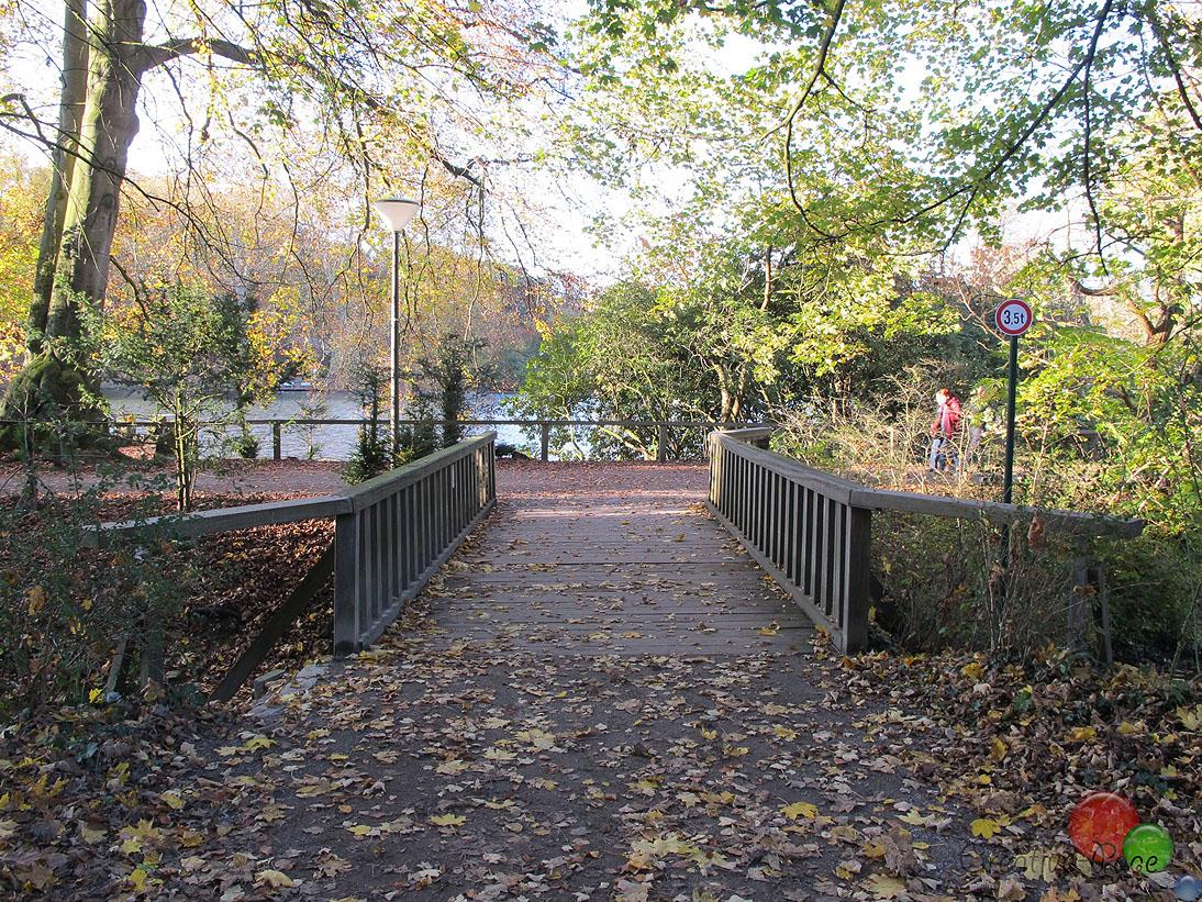 Rombergpark49