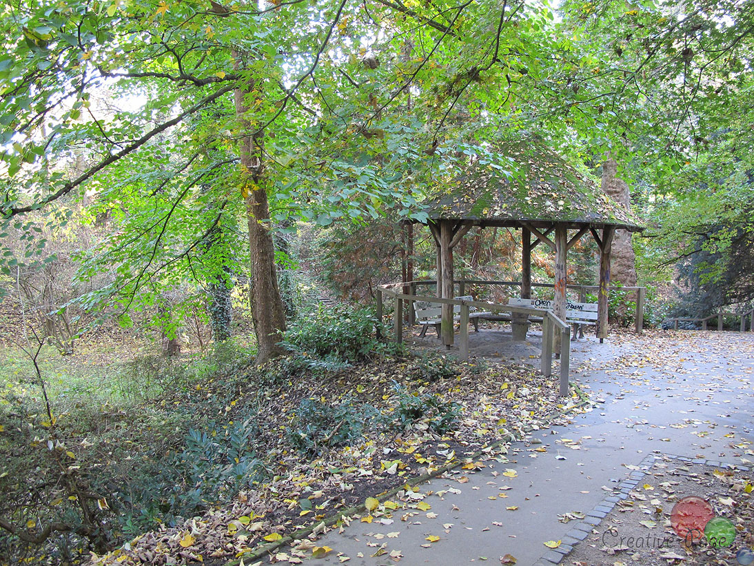 Rombergpark8