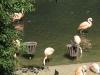 zoo-ausflug6