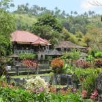 Tirtagangga - Wasserpalast