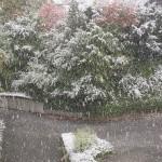 Schnee im Oktober